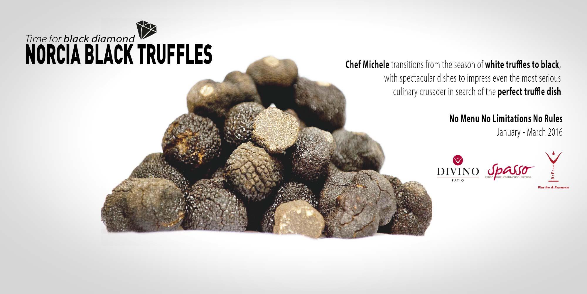 black-truffle-web-01-01