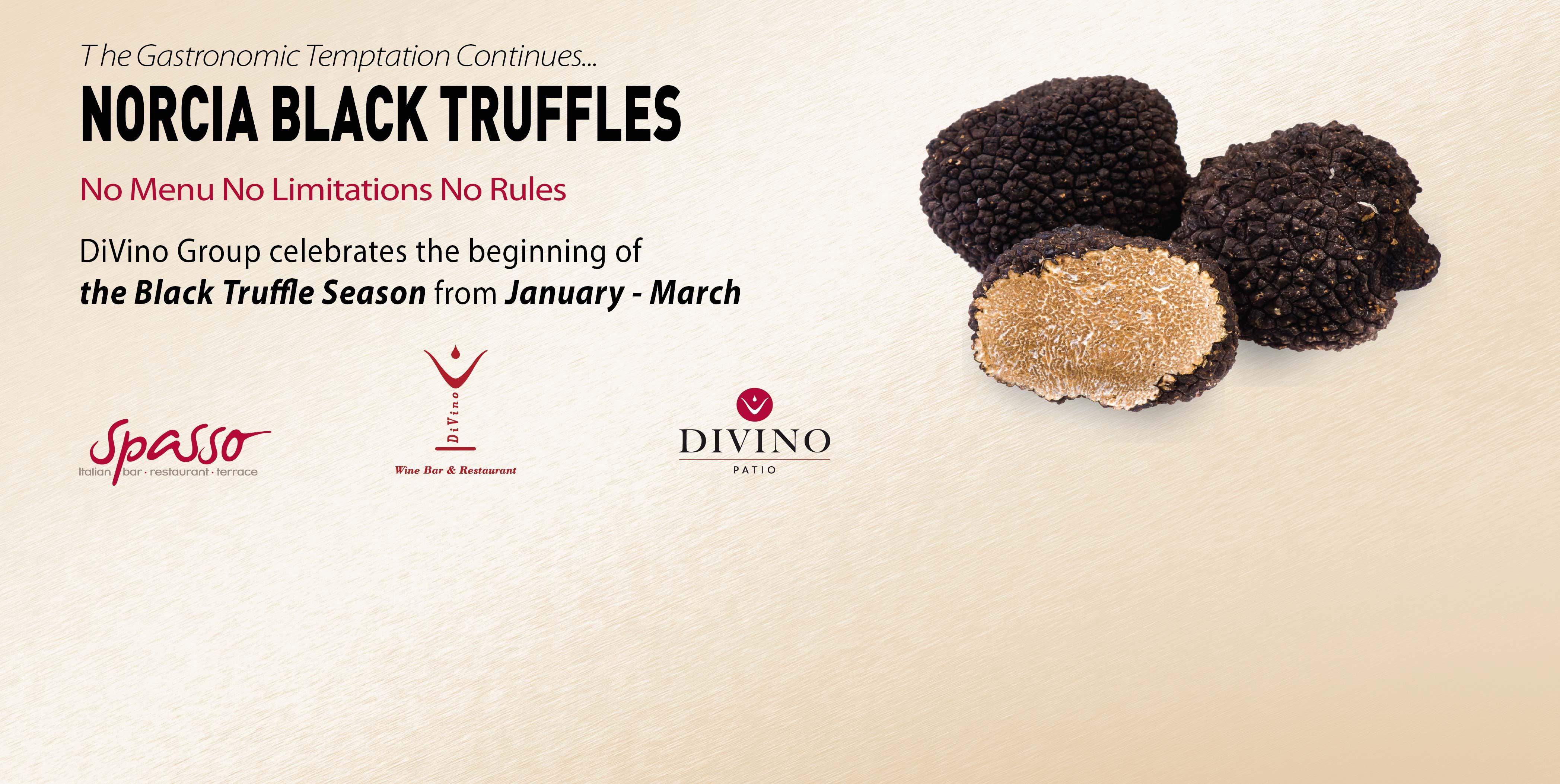 black-truffle-web-02